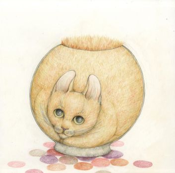 catbowl by theitje89
