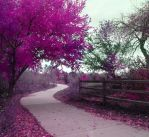 Premade Background 601 by AshenSorrow