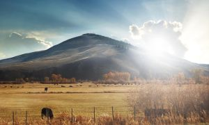 I dont know by comsic