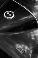 Sting Ray 2 by AvalonProject