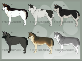 Siberian Husky Designs For Sale - CLOSED by xMush-Kennelsx
