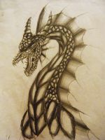 Dragon's rage by mayle128