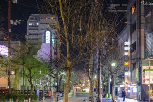 Late hour in Kyoto by Rikitza