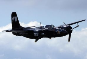 Grumman Tigercat Flyby by shelbs2