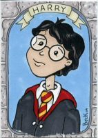 Harry Potter by beckadoodles