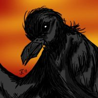 Crow - Digital Sketch by VampirateMace