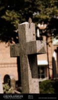 IMG 6928-Cross by D3vilusion