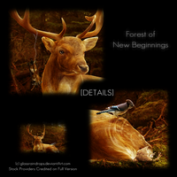 DETAILS :: Forest of New Beginnings by xglassraindrops