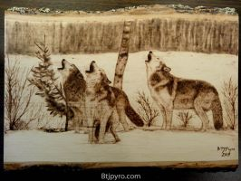 Wolves - Wood burning by brandojones