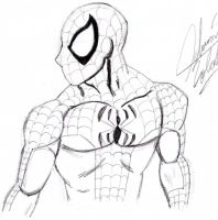 Spiderman II by rolthomaster