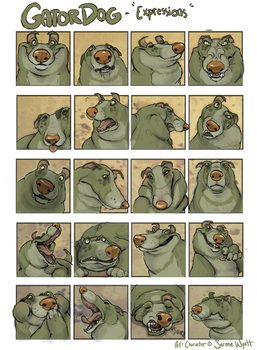 Gator expressions by colonel-strawberry