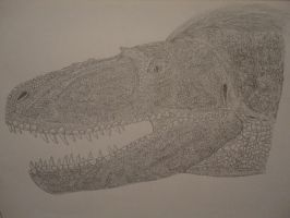 Daspletosaurus torosus head by Xezansaur
