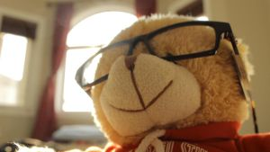 Glasses on a Bear by talim556