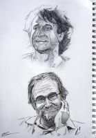 Robin Williams by Simple1DEA