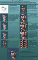 Face Colouring Process by ElizaLento