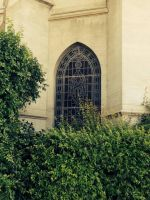 MICHAEL AT FOREST LAWN by KerensaW