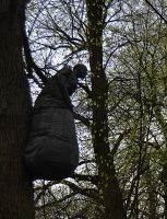 Doll hanging on a tree1 by FrankAndCarySTOCK