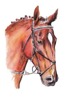 Watercolour Horse 2 by ColouredClouds