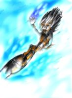 Shadowill - Ice Cap Zone by 7asoud