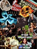Hunger Games Collage by JustTheGirlOnFire