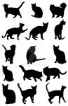 Free DOWNLOAD Vector Cats Silhouettes by manicobe