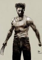 The Wolverine by Williaaaaaam