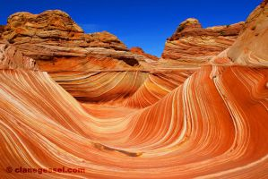 The Wave by clanegessel