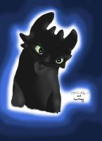 Toothless gift by SnowstormSpirit2285