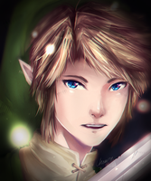 Link by Chewsome