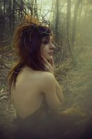 Wild places II by Silecia