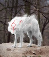 Okami WIP by santiagocamps