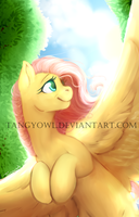 Fluttershy by Tangyowl