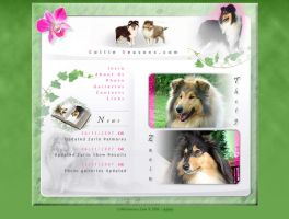 Collie website by postream