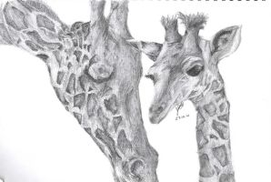 Giraffe by FMAFREAK8