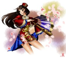 Dynasty warriors7_Da Qiao by Draven4157
