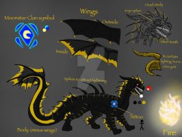 HTTYD:Storm Rider-Ignis Reference Sheet by BlackDragon-Studios