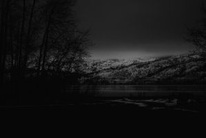 dark winter days2 by bachus99
