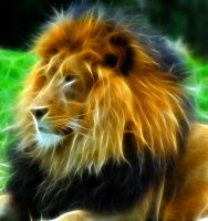 Lion fractal by l3viathan2142