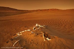 Empty Quarter's Wilderness by SketchupAE