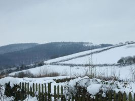 Snowy View 3 by Chemai