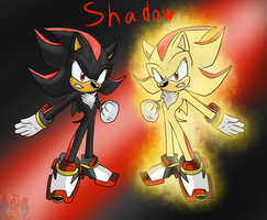 Shadow the Hedgehog ( Normal/Super ) by ColorDrake