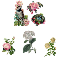 Mix_Flowers_2_PNG by chaseandlinda