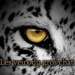 Mariana - Les yeux du gros chat - Partie 1 by HynekVictorian