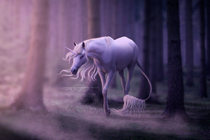 the last unicorn by perfectperfection