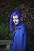 Mysterious  - Raven Cosplay by WildTigerCosplay