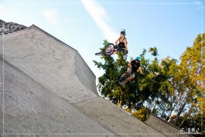 Tandem Whip by small-sk8er