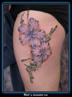 Purple Hibiscus by ritch-g
