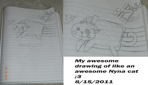 Nyan cat -i drew this- by BUGGIEIS10