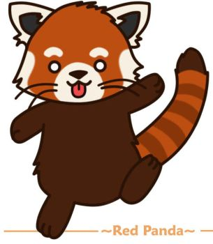 Red Panda by SunflowerRacoon