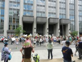 Rallying Against Monsanto's Evil Plans by Flaherty56